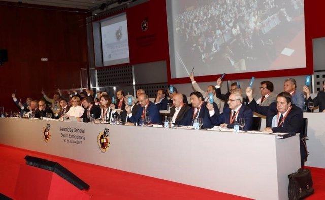 La Asamblea de la RFEF aprueba las cuentas de 2016 y el presupuesto de 2017