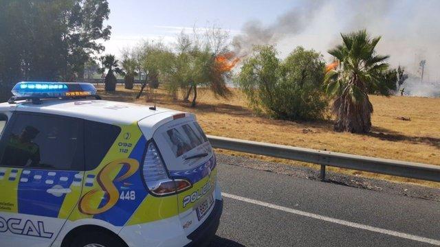 Incendio en una zona de pastos junto al aeropuerto de Sevilla