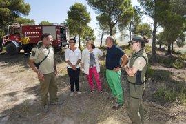 El incendio de Falces ha afectado a cerca de cinco hectáreas de pino carrasco