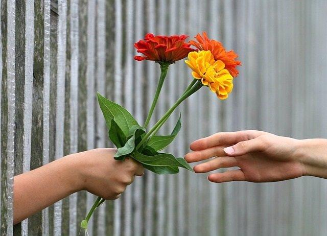 Ramo de flores, manos, generoso, generosidad, regalo