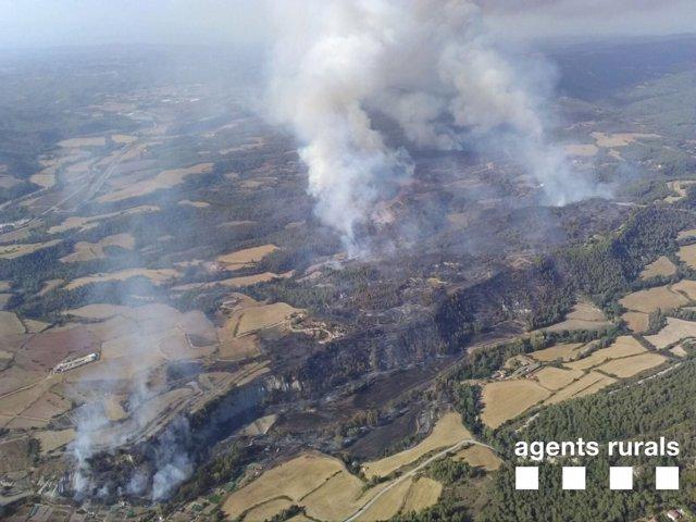Terreno quemado por el fuego de Artés (Barcelona)
