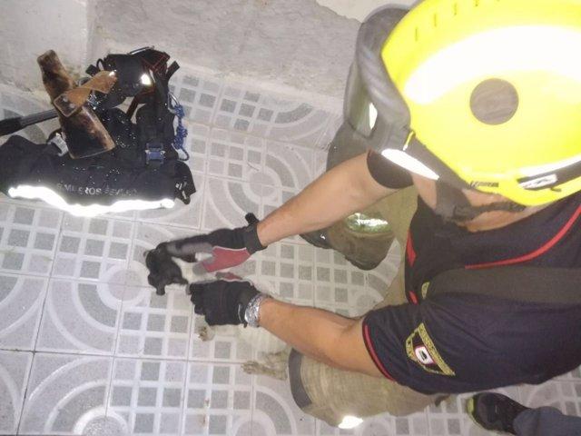 Perro rescatado de una azotea en Torreblanca