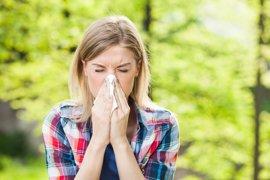 Las células inmunes pueden ser la clave para mejorar las terapias contra la alergia