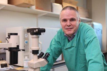 Investigan un nuevo fármaco para tratar a pacientes con leucemia mieloide aguda