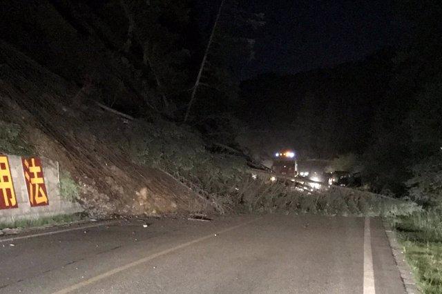 Árboles caídos por el terremoto en el condado de Jiuzhaigou