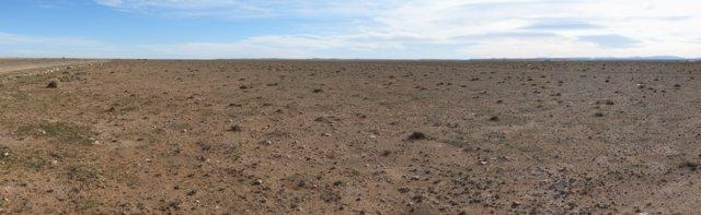 La estepa de esparto de Argelia, en peligro de desertificación