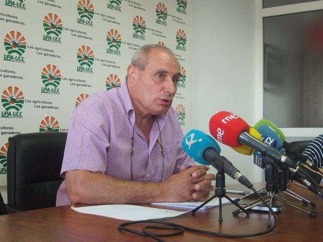 UPA-UCE Extremadura defiende las medidas contra el abejaruco