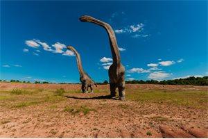 Encuentran los restos del dinosaurio más grande del mundo en la Patagonia