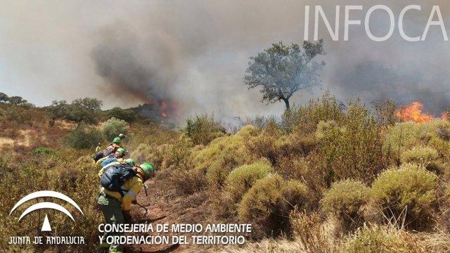 Imagen del incendio de este jueves en El Castillo de las Guardas (Sevilla)