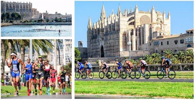 El Santander Triathlon Series aterriza en Palma de Mallorca