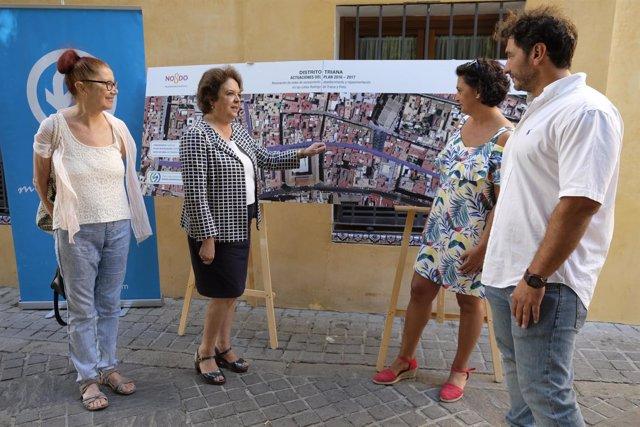 La delegada del Distrito Triana, Carmen Castreño