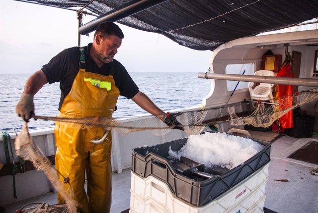 Peñíscola arranca las primeras experiencias en pesca turismo