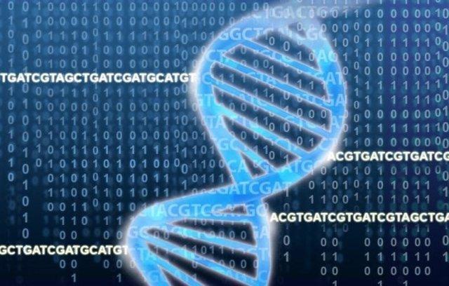 La doble hélice del ADN descansa sobre un campo de ACGTs y números binarios