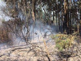 Detenido un hombre acusado de 28 incendios forestales en Mesía y Frades