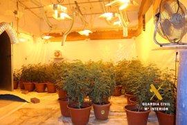 Intervenidos casi 10 kilos de marihuana y desmantelado un cultivo interior en Villarrobledo