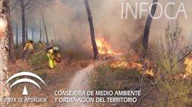 """Fiscal señala que existe una sospecha """"más que fundada"""" en que el incendio de Cartaya (Huelva) ha sido intencionado"""