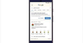 Google pone en marcha un sistema de notificaciones con los niveles del polen