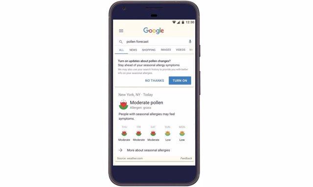Google temporada de alergias notificaciones smartphone internet