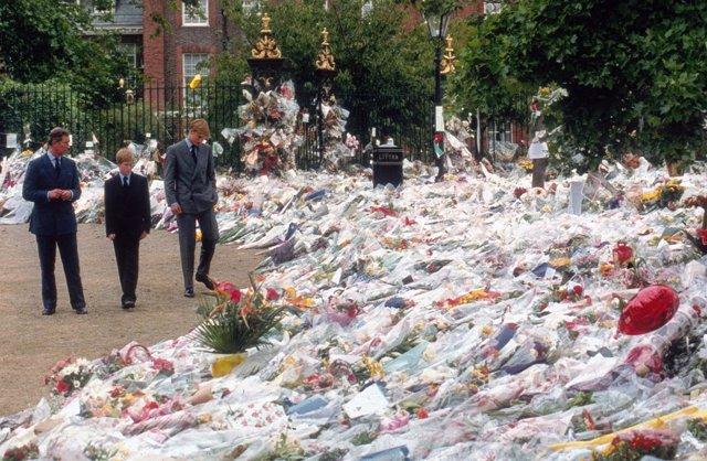 Príncipe de Gales, príncipe Harry y príncipe William en un homenaje a Lady Di