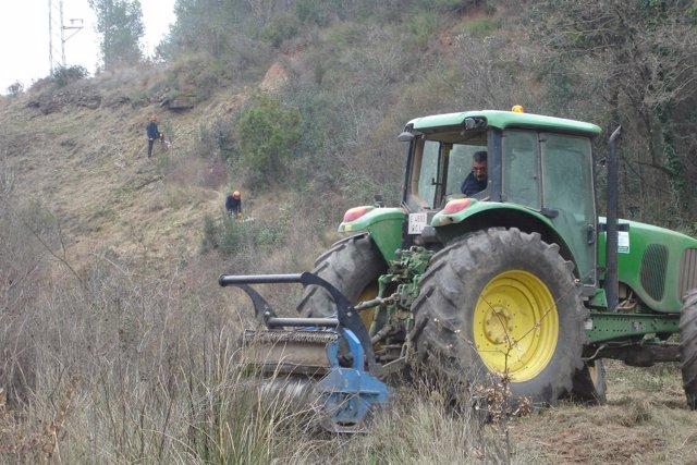 Trabajos de limpieza de zonas cercanas a líneas de Endesa