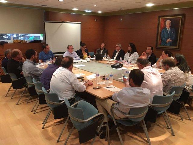 Reunión del consejero de Sanidad con los alcaldes del Oriente.