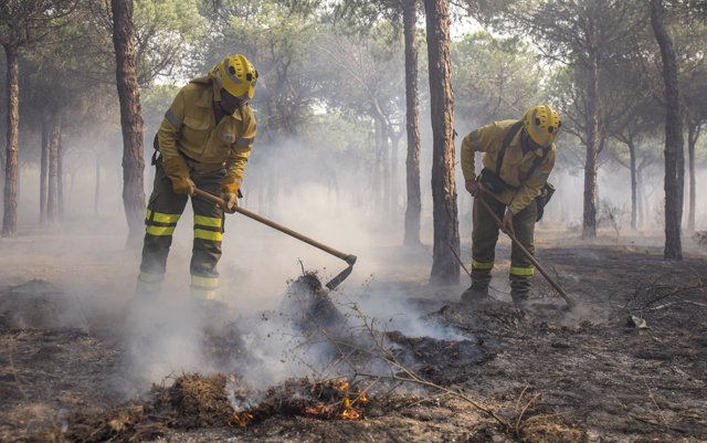 Efectivos trabajando para apagar el incendio de Moguer (Huelva)