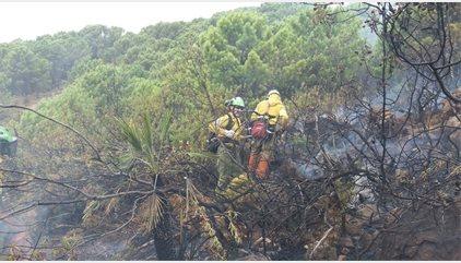 Cortan la carretera A-397 para facilitar labores de extinción en el incendio de Benahavís