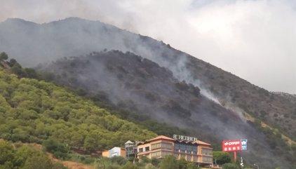 Estabilizado el incendio forestal declarado en El Higuerón de Mijas