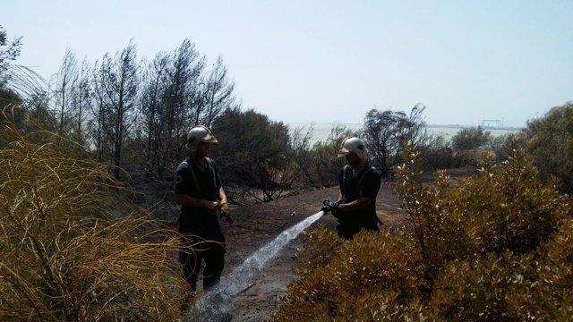 Zona de matorral afectada en el incendio de Puerto Real.