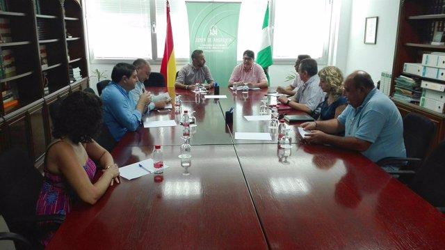 El delegado de Economía y Endesa se reúnen con alcaldes de Almería