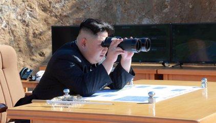 La ONU intercepta dos envíos de Corea del Norte relacionados con el programa de armas químicas de Siria