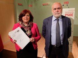 El PSOE pide que el testimonio del hijo mayor de Juana Rivas sea tenido en cuenta