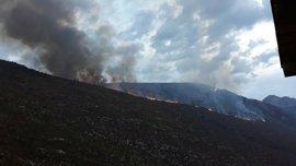 Cuatro medios aéreos y cuatro cuadrillas intentan sofocar el incendio de Fanlo
