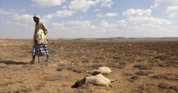 Las donaciones internacionales alejan el riesgo de hambruna que ha amenazado a Somalia tras las sequías
