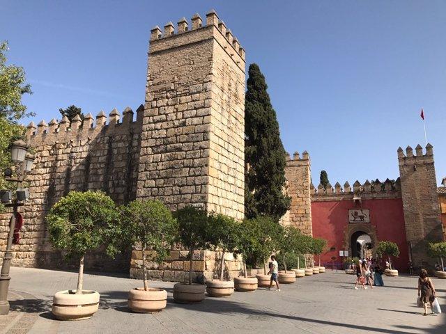 Maceteros de gran tamaño instalados en la cola de los Reales Alcázares