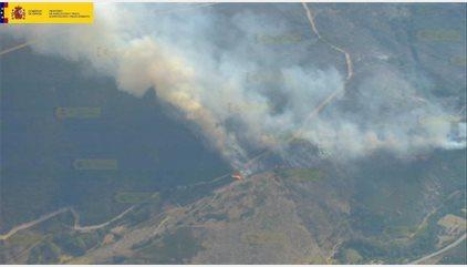 Medio Ambiente amplía a 15 el número de aeronaves que combaten el fuego declarado en Encinedo (León)