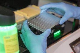 Un análisis de sangre podría predecir la resistencia del cáncer de próstata