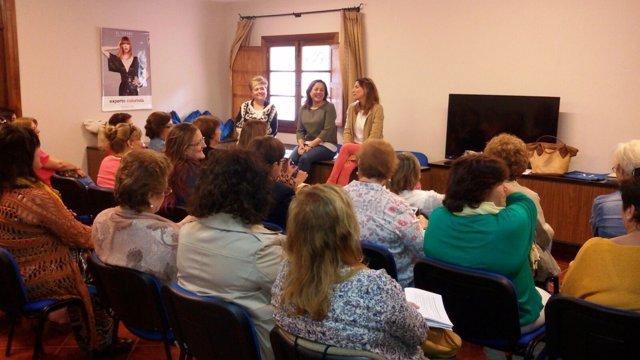 Consejo provincial de la mujer, Diputación