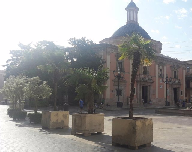 Maceteros en la Plaza de la Virgen