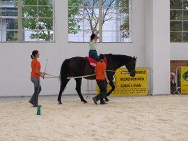 """El papel del caballo como """"compañero en el ámbito terapéutico"""""""