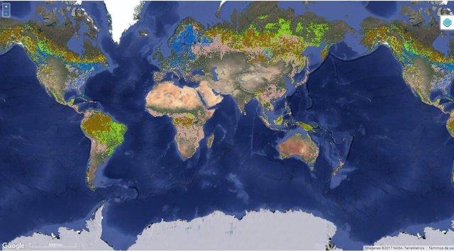 Mapa de bosques certificados