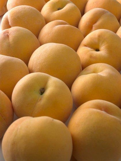 La Comisión Europea amplía en 20.000 toneladas los cupos de retirada de fruta de hueso