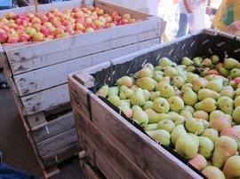 Los sindicatos agrarios insisten en retirar 40.000 toneladas de fruta  para descongestionar el mercado