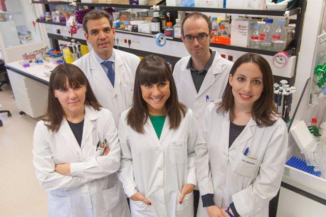 Imagen del equipo investigador.