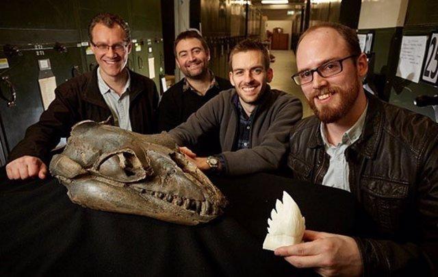 Autores del estudio con restos examinados