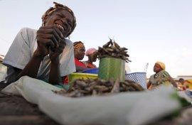 Tanzania anuncia el regreso a Burundi de los refugiados que acoge el país a partir del 7 de septiembre