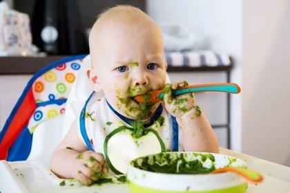 Cómo debe ser una alimentación saludable en el bebé