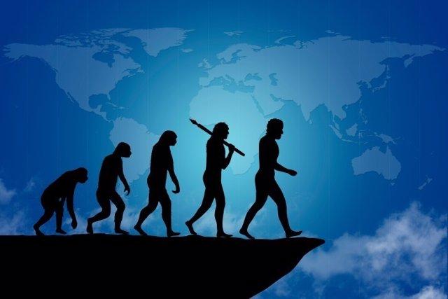 La evolución del hombre para caminar erguido.