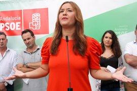 Arranca la recogida de avales previa a las primarias del PSOE de Sevilla