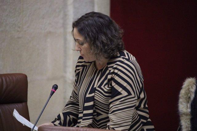 La portavoz de IULV-CA en materia de Agricultura, María del Carmen Pérez